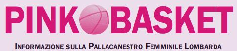Pinkbasket-banner