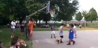 Ecco una piccola parte della Finalissima Minibasket giocata oggi e vinta, dopo un avvincente…