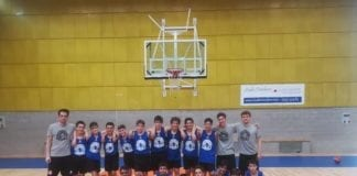 size 40 bc834 81231 Tigers Archivi - Sanga Basket Milano