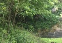 Le cascate dell'Acqua Fraggia Valchiavenna Turismo Shot Camp 2018